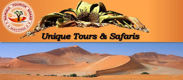 UNIQUE TOURS & SAFARIS